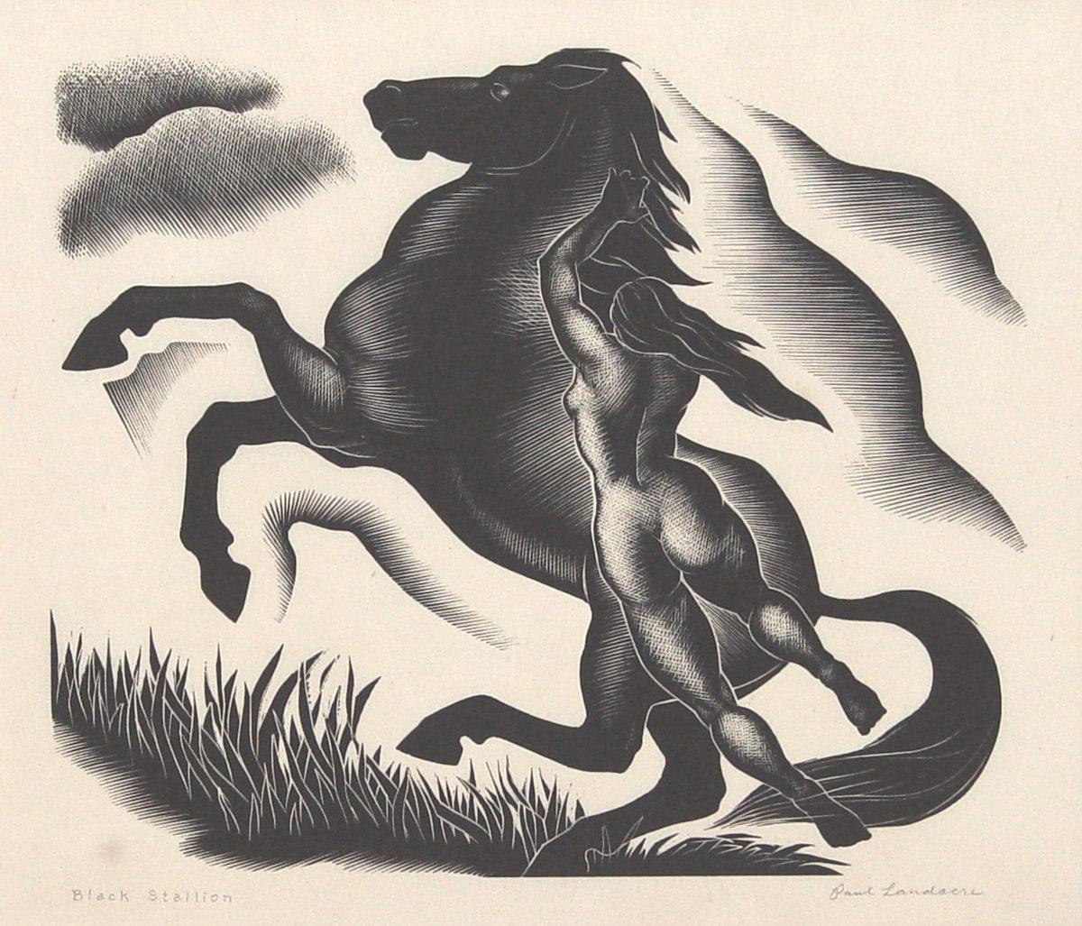 LANDACRE_Black Stallion