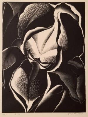 """Paul Landacre's """"Iris"""" 1934"""